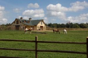 Triple Crown Barn