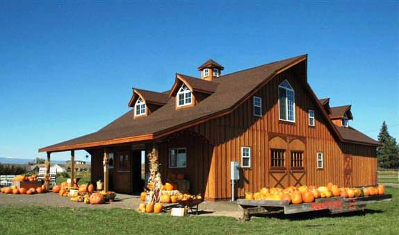 Sallas steel pole barn kits michigan for Barn style house designs